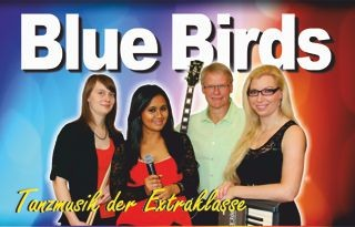 Blue Birds_Internet_klein
