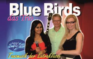 Duo_Blue_Birds_Trio